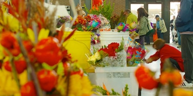 Eastern Market showing interior views, flowers and shopping