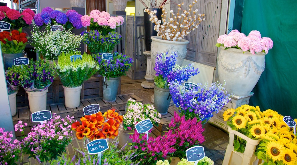 Flower Market showing markets, interior views and flowers