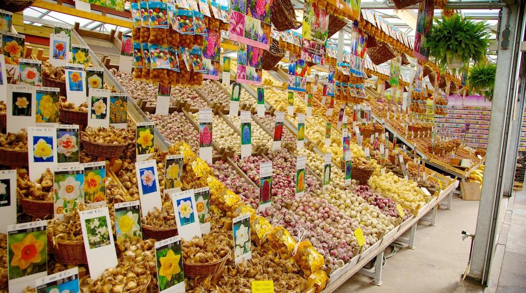 Flower Market featuring markets