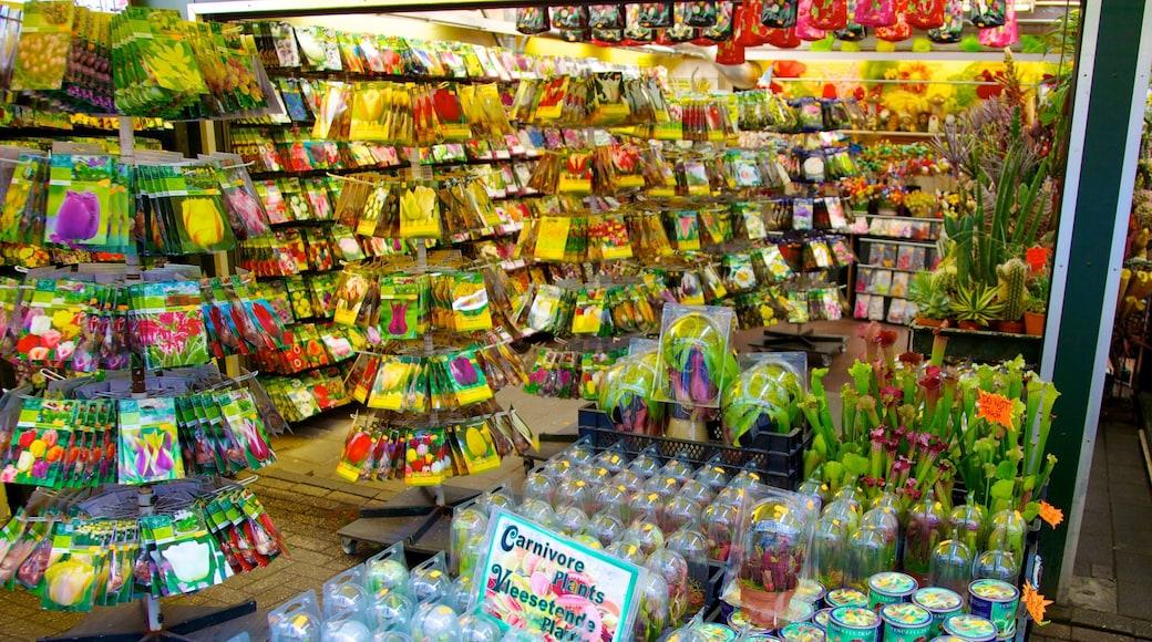 Blumenmarkt mit einem Märkte, Innenansichten und Blumen