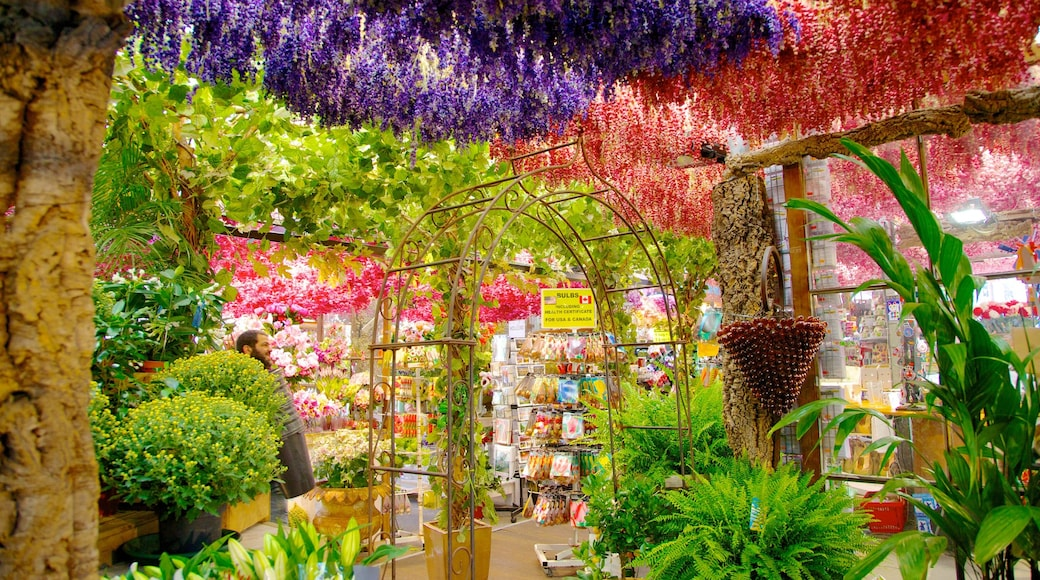 Flower Market which includes interior views, markets and flowers