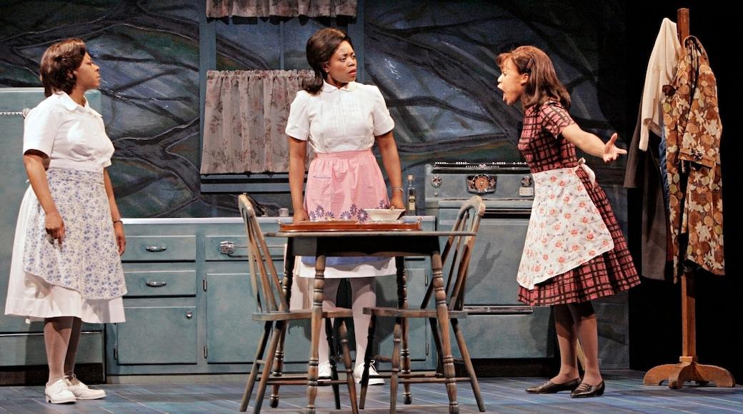 Guthrie Theater ofreciendo escenas de teatro, vistas de interior y acciones artísticas