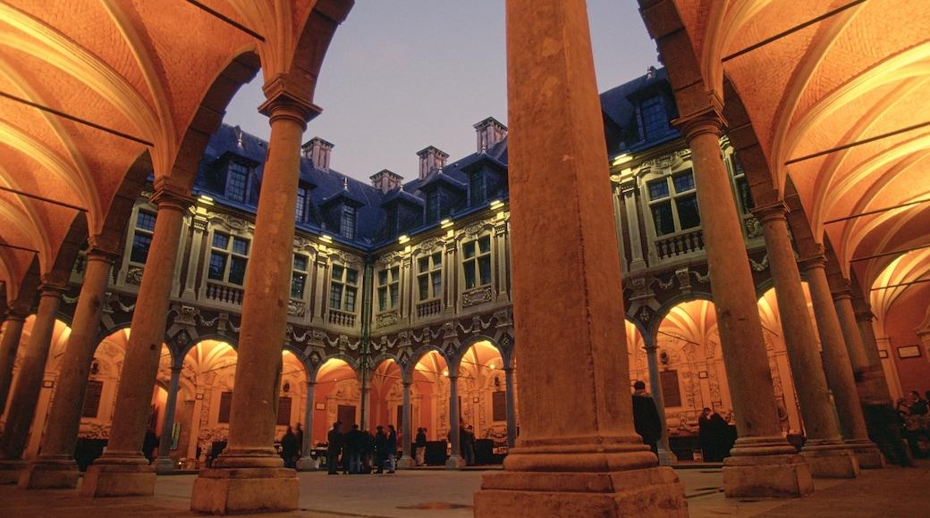 Lille inclusief een kasteel en historische architectuur