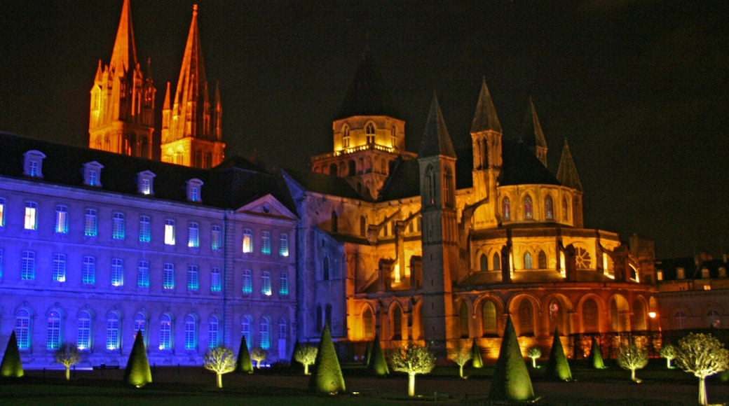 Caen which includes château or palace, a city and night scenes