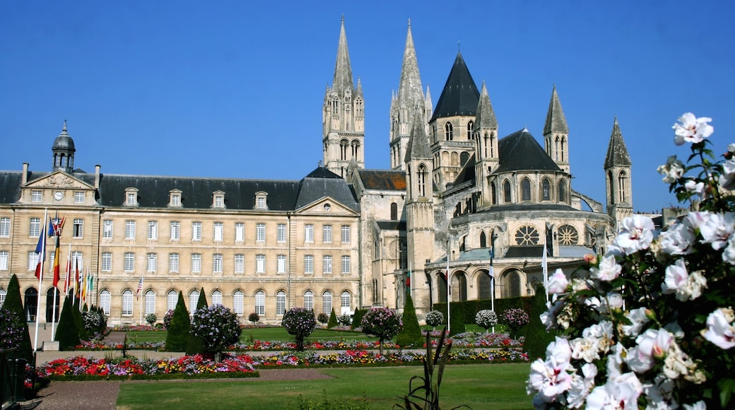 Caen featuring heritage architecture, flowers and château or palace