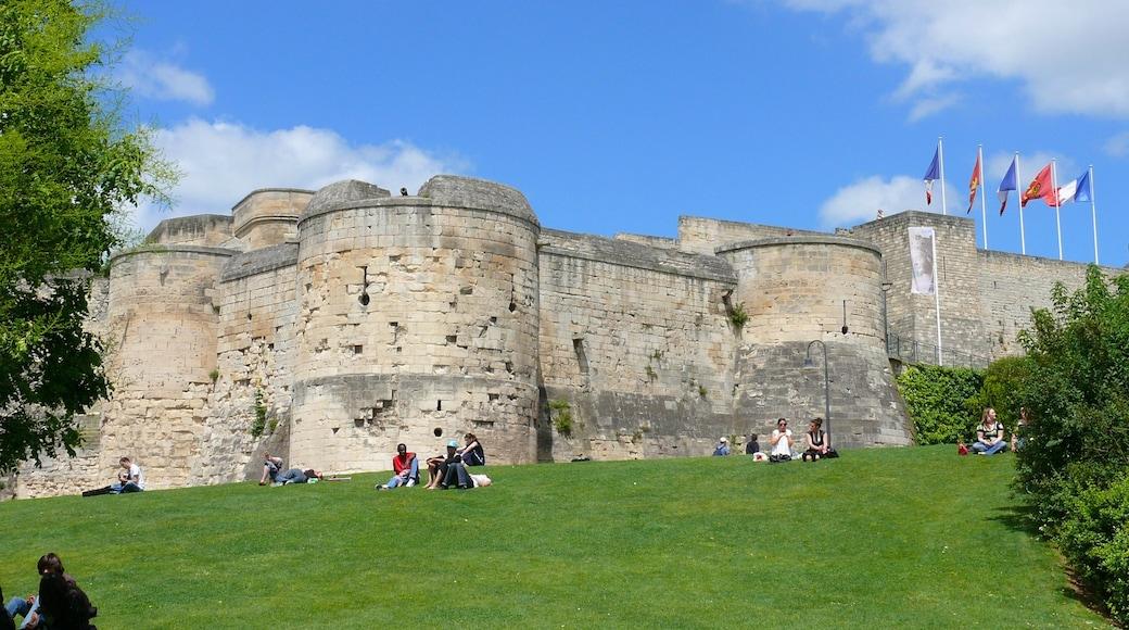 Caen montrant patrimoine architectural et château
