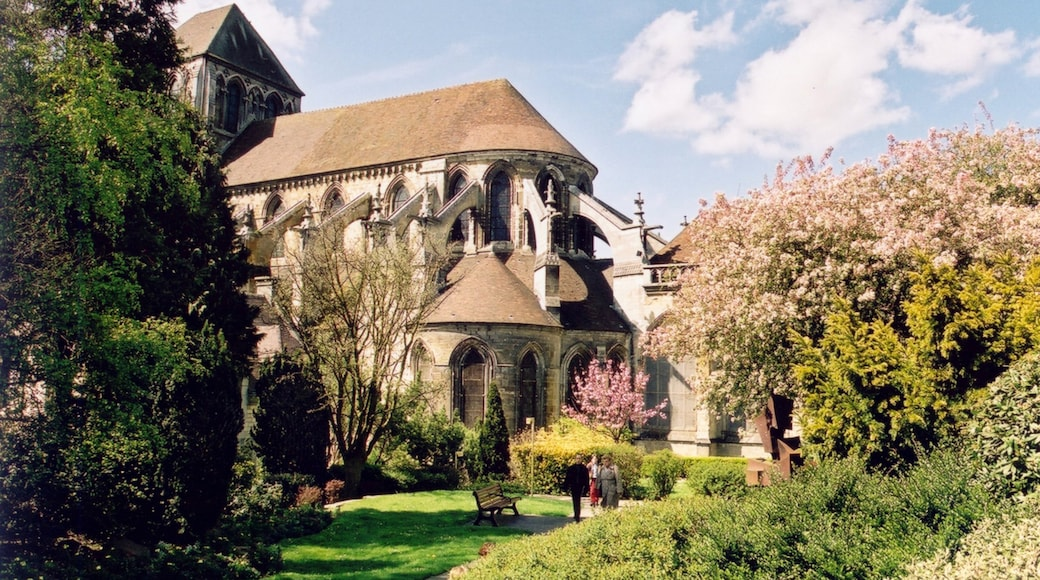 Lisieux which includes a church or cathedral, heritage architecture and flowers