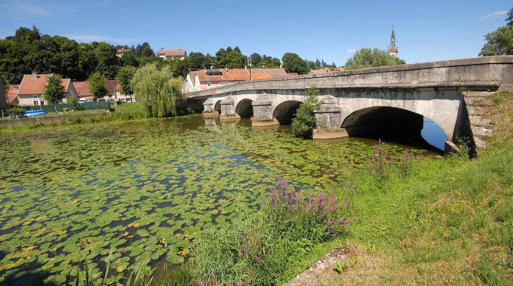 Epinal qui includes petite ville ou village, pont et fleurs