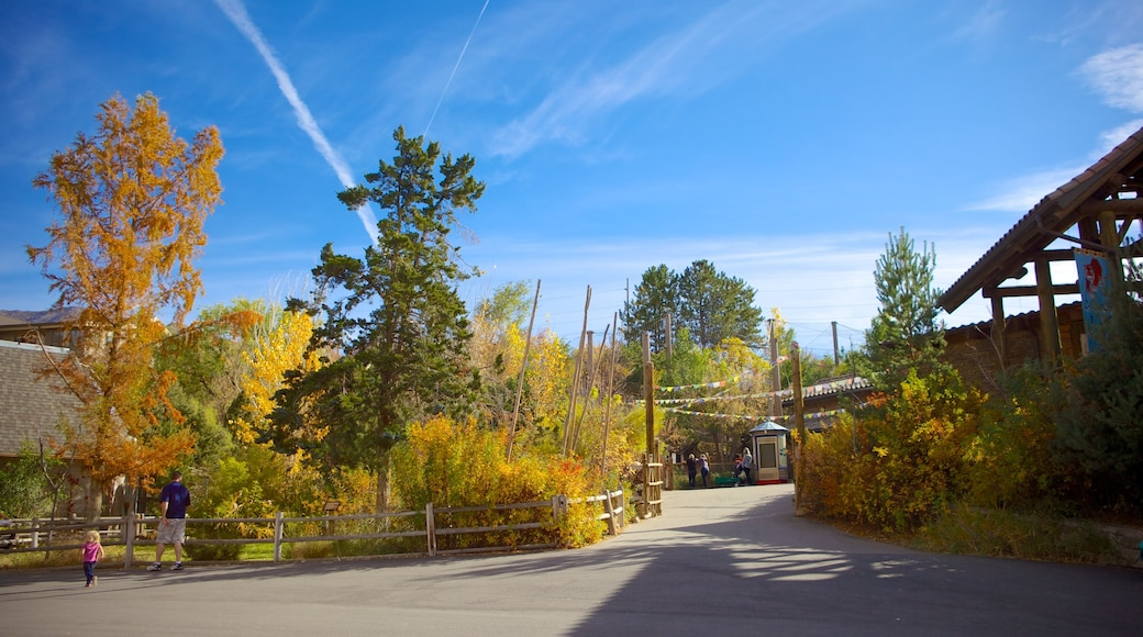 Hogle Zoo que inclui folhas de outono