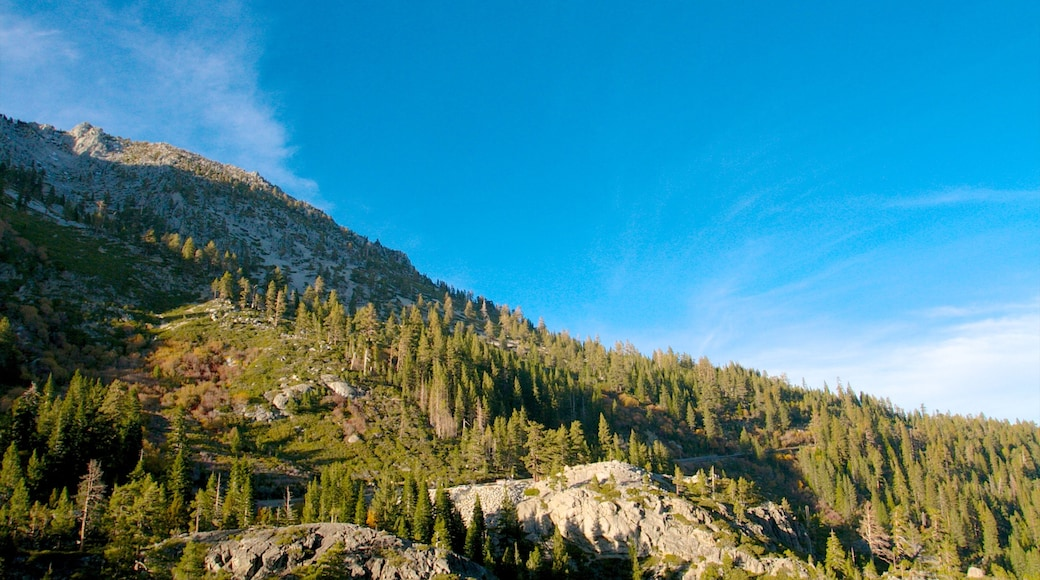 Emerald Bay State Park which includes a garden, landscape views and forests