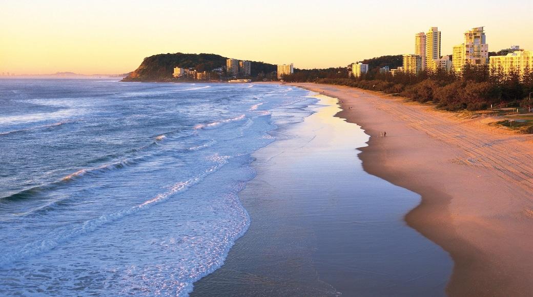 Plage de Burleigh qui includes scènes tropicales, coucher de soleil et plage de sable