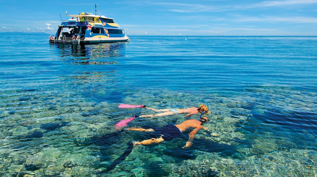 Great Barrier Reef which includes coral and snorkelling as well as a couple
