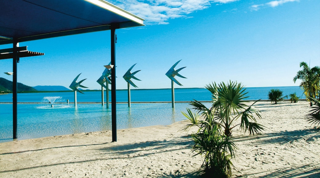 Cairns Esplanade which includes a sandy beach, general coastal views and tropical scenes