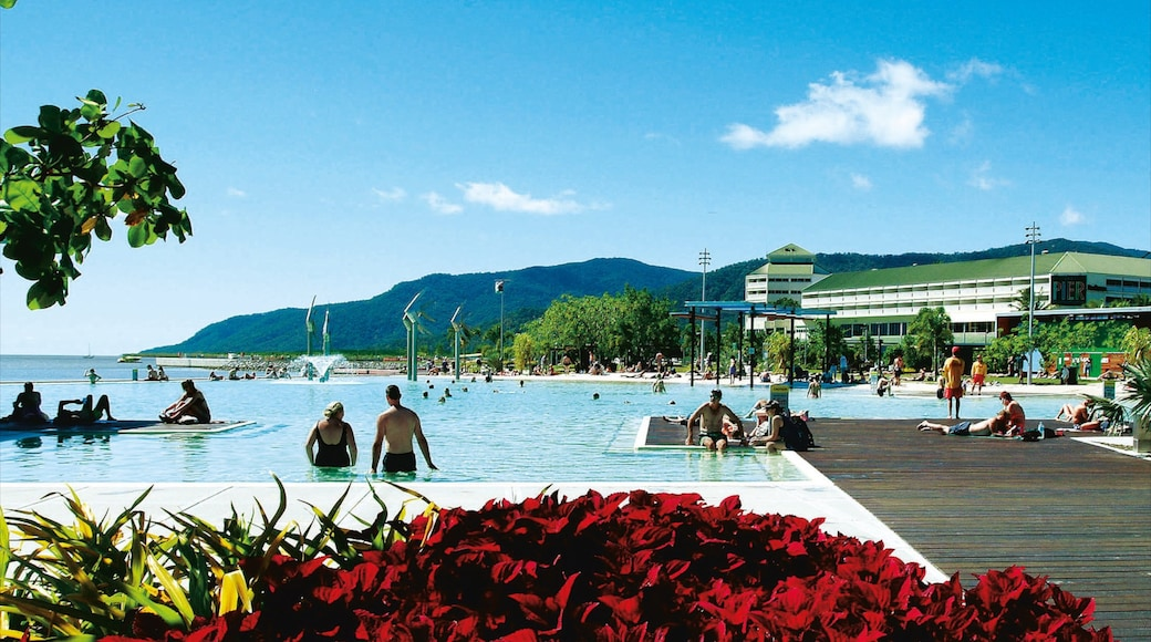 Cairns Esplanade showing a luxury hotel or resort, swimming and a pool