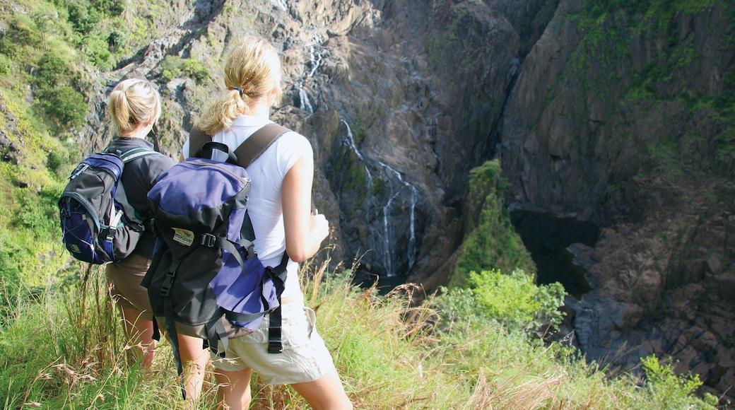 Parque Nacional Barron Gorge que incluye senderismo o caminata, un barranco o cañón y vistas