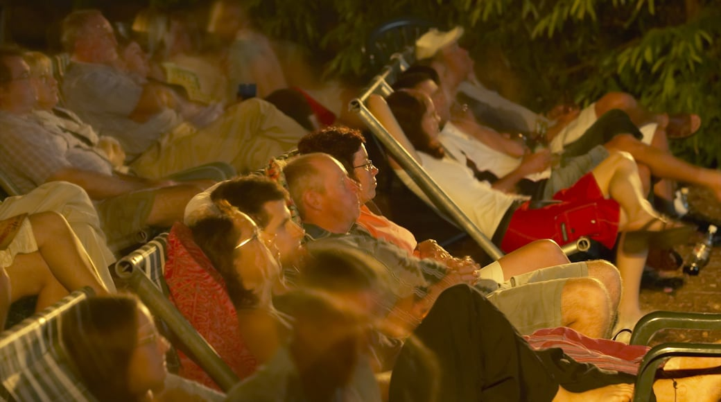 Darwin Deckchair Cinema showing theatre scenes and night scenes as well as a large group of people