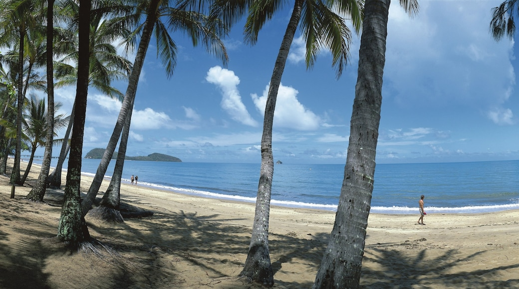 Palm Cove showing a beach, landscape views and tropical scenes