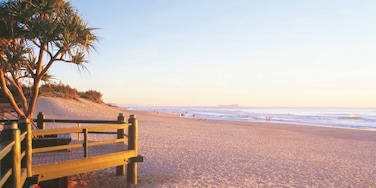 Maroochydore showing landscape views, a beach and tropical scenes