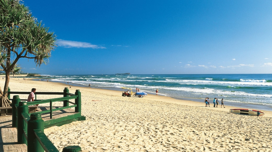 Maroochydore which includes landscape views, tropical scenes and skyline