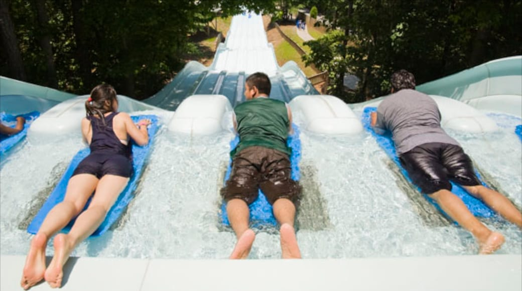 Six Flags White Water featuring a waterpark and rides as well as a small group of people