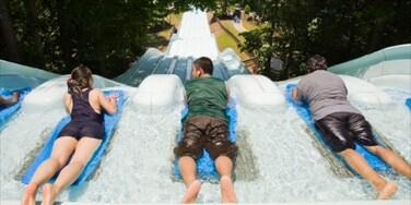Six Flags White Water ofreciendo paseos y un parque acuático y también un pequeño grupo de personas