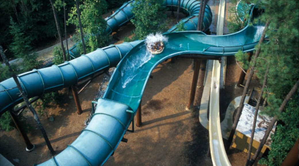 Six Flags White Water featuring a waterpark and rides