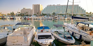 Eilat Marina which includes a bay or harbour