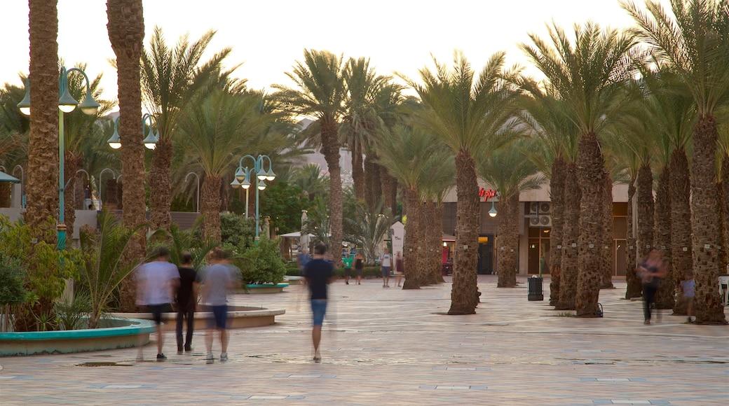 Eilat mit einem Sonnenuntergang, Platz oder Plaza und Garten