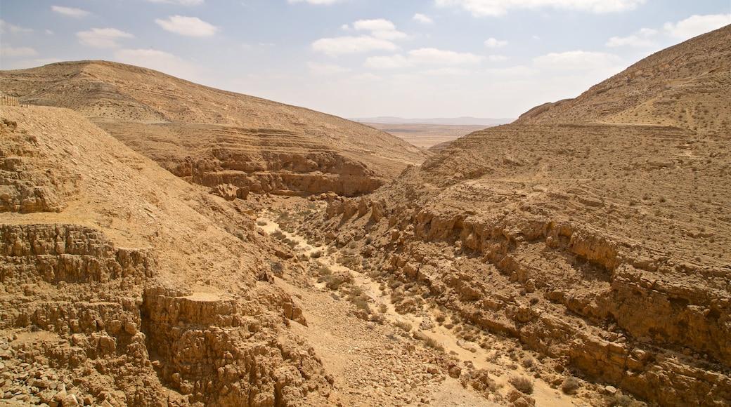Mamshit-kansallispuisto joka esittää rotko tai kanjoni, autiomaanäkymät ja maisemat