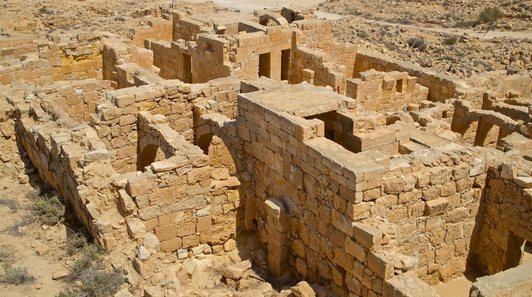 Parc national de Mamshit mettant en vedette vues du désert, patrimoine historique et ruine