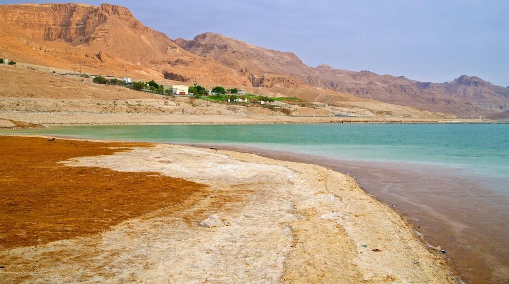 Ein Bokek featuring a beach and general coastal views