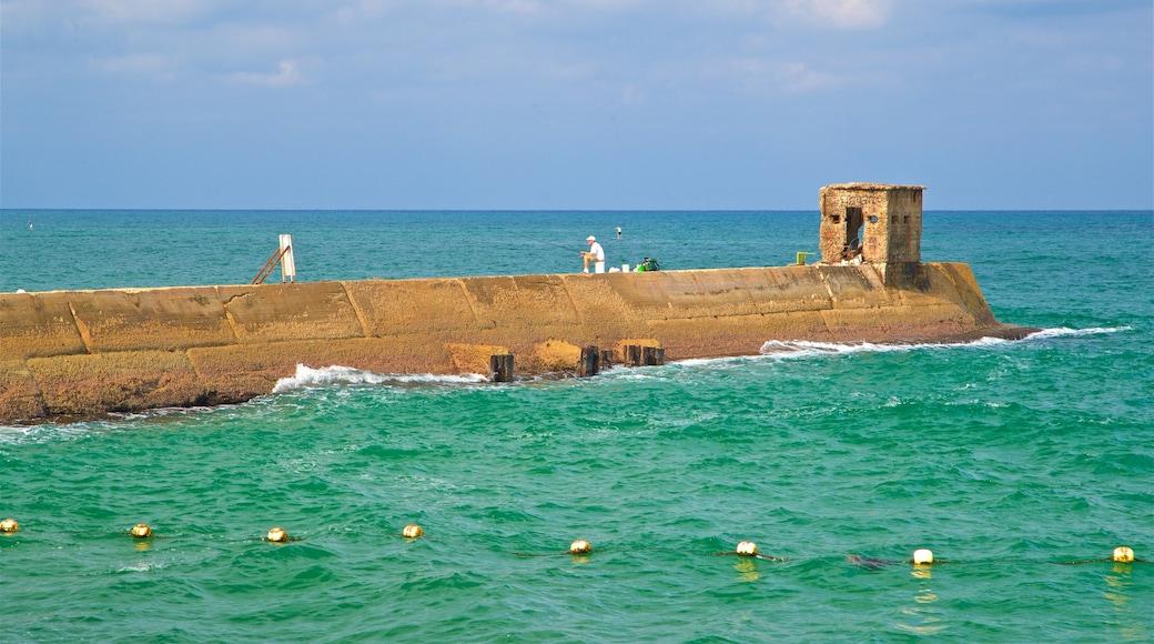 Old Tel Aviv Port featuring general coastal views