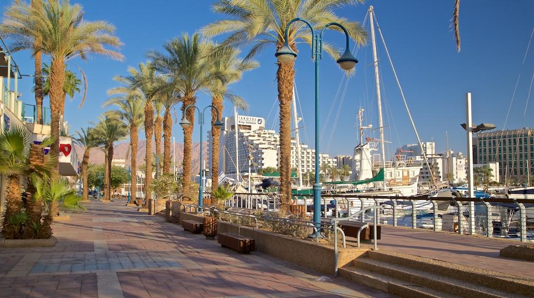 Jachthafen Eilat welches beinhaltet Bucht oder Hafen, Luxushotel oder Resort und Park
