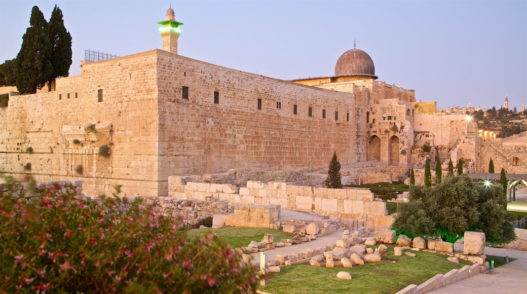 Al-Aqsa Mosque which includes heritage architecture, a ruin and wild flowers