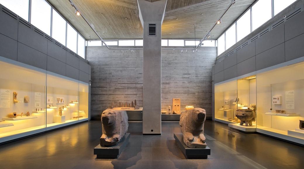 Israel Museum showing interior views
