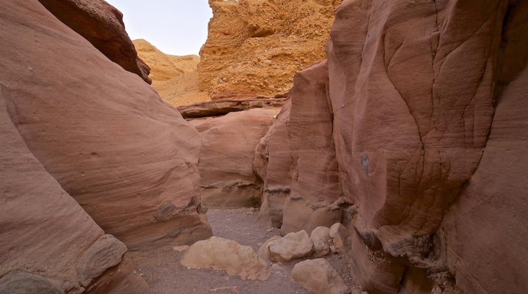 Red Canyon mit einem Schlucht oder Canyon