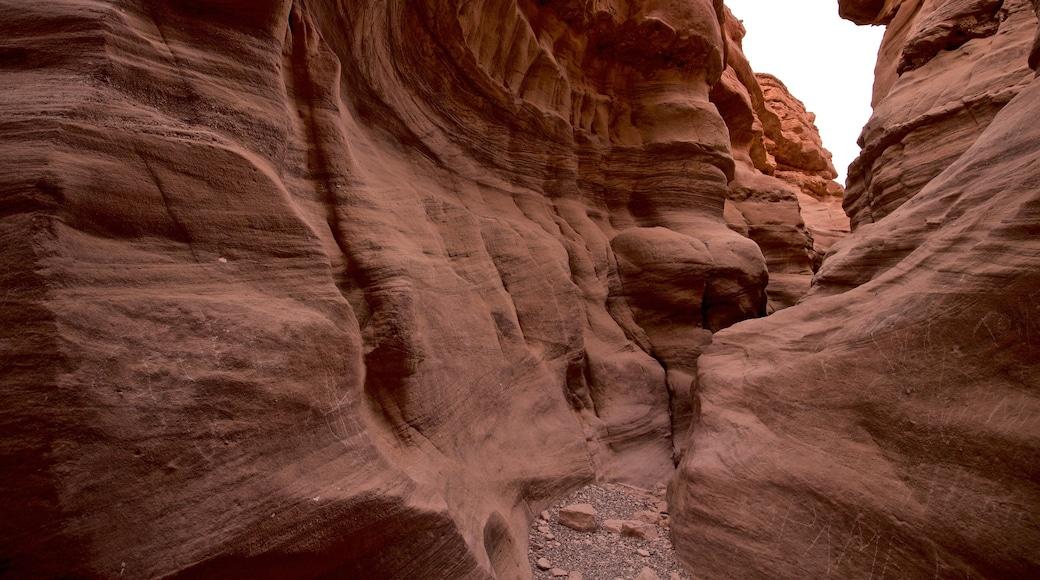 Red Canyon das einen Schlucht oder Canyon
