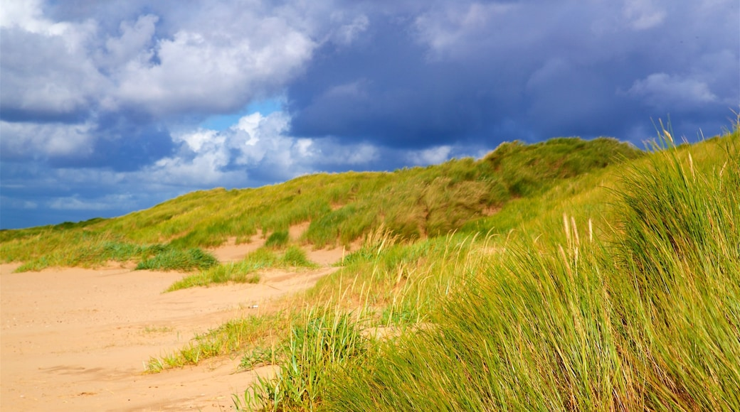 Ainsdale Beach which includes landscape views and tranquil scenes