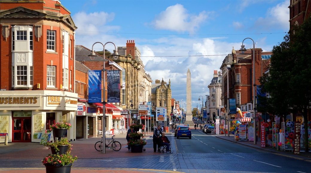 Southport showing flowers, a city and street scenes