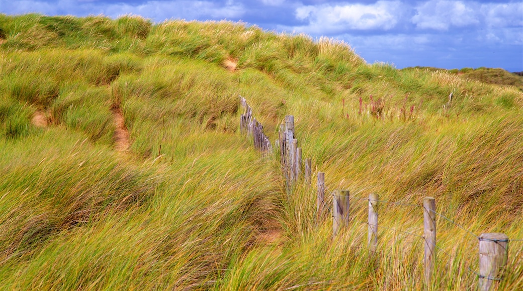 Ainsdale Beach featuring general coastal views