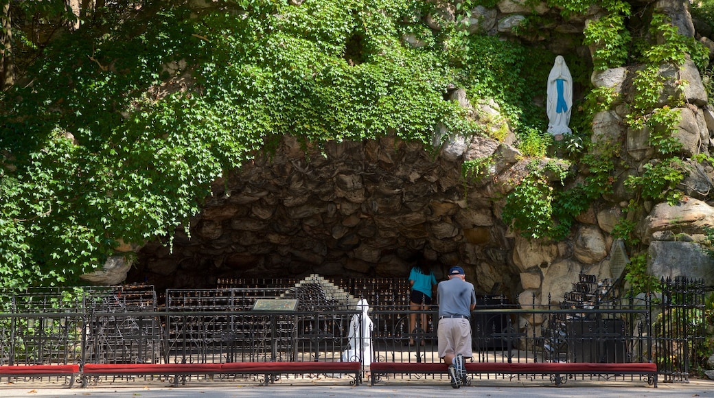 Grotto of Our Lady of Lourdes featuring a park as well as an individual male