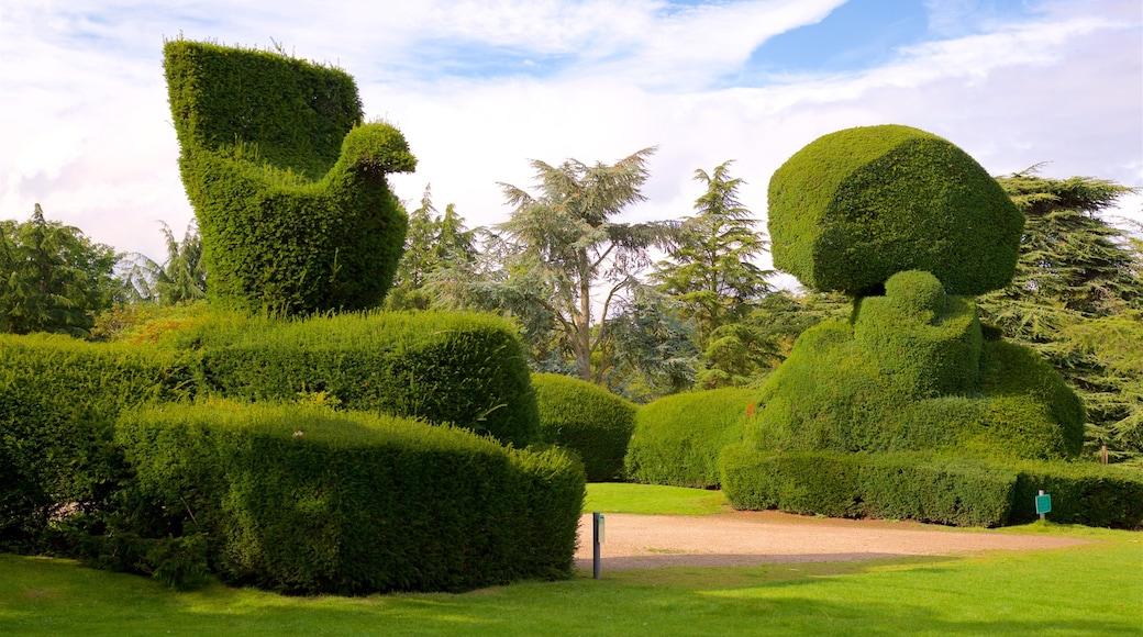 Elvaston Castle showing a park