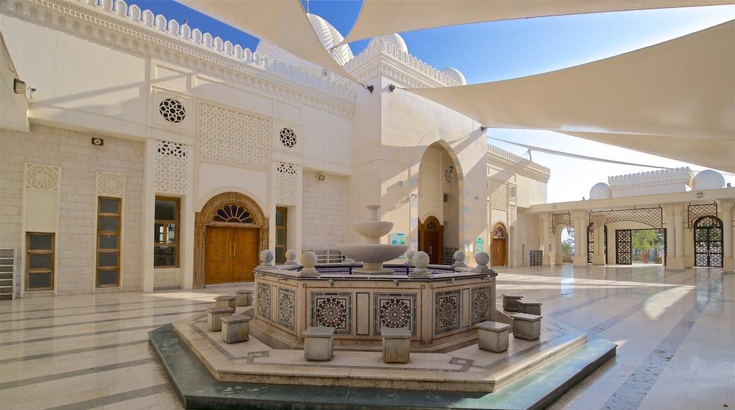Aqaba showing a fountain