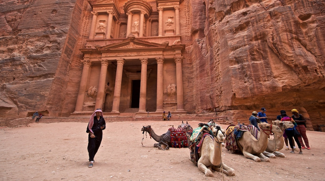 Wadi Musa mit einem historische Architektur, Landtiere und Schlucht oder Canyon
