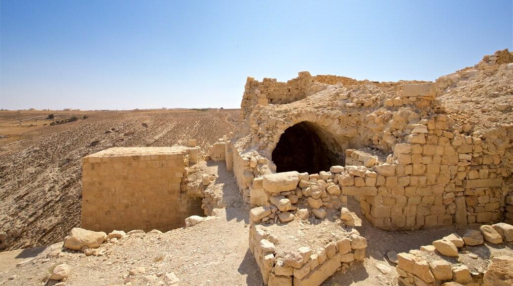Shobak Castle showing desert views, a ruin and heritage elements