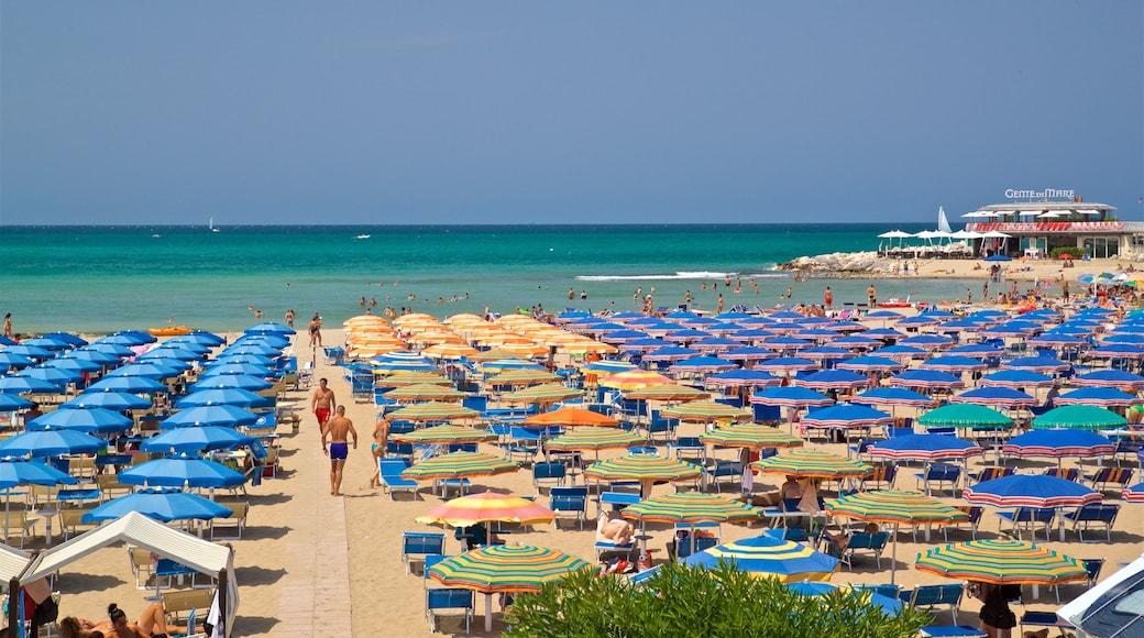 Cattolica mostrando spiaggia sabbiosa e vista della costa
