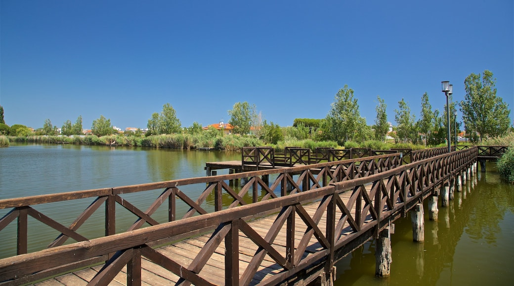 Bellaria-Igea Marina mettant en vedette pont et rivière ou ruisseau