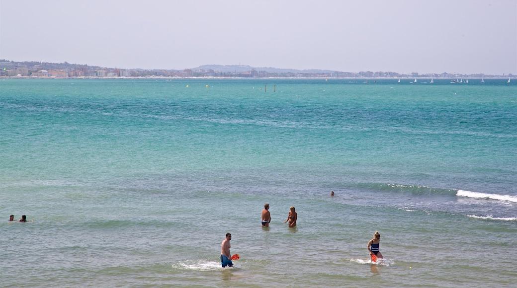 Cattolica che include vista della costa e nuoto cosi come un piccolo gruppo di persone