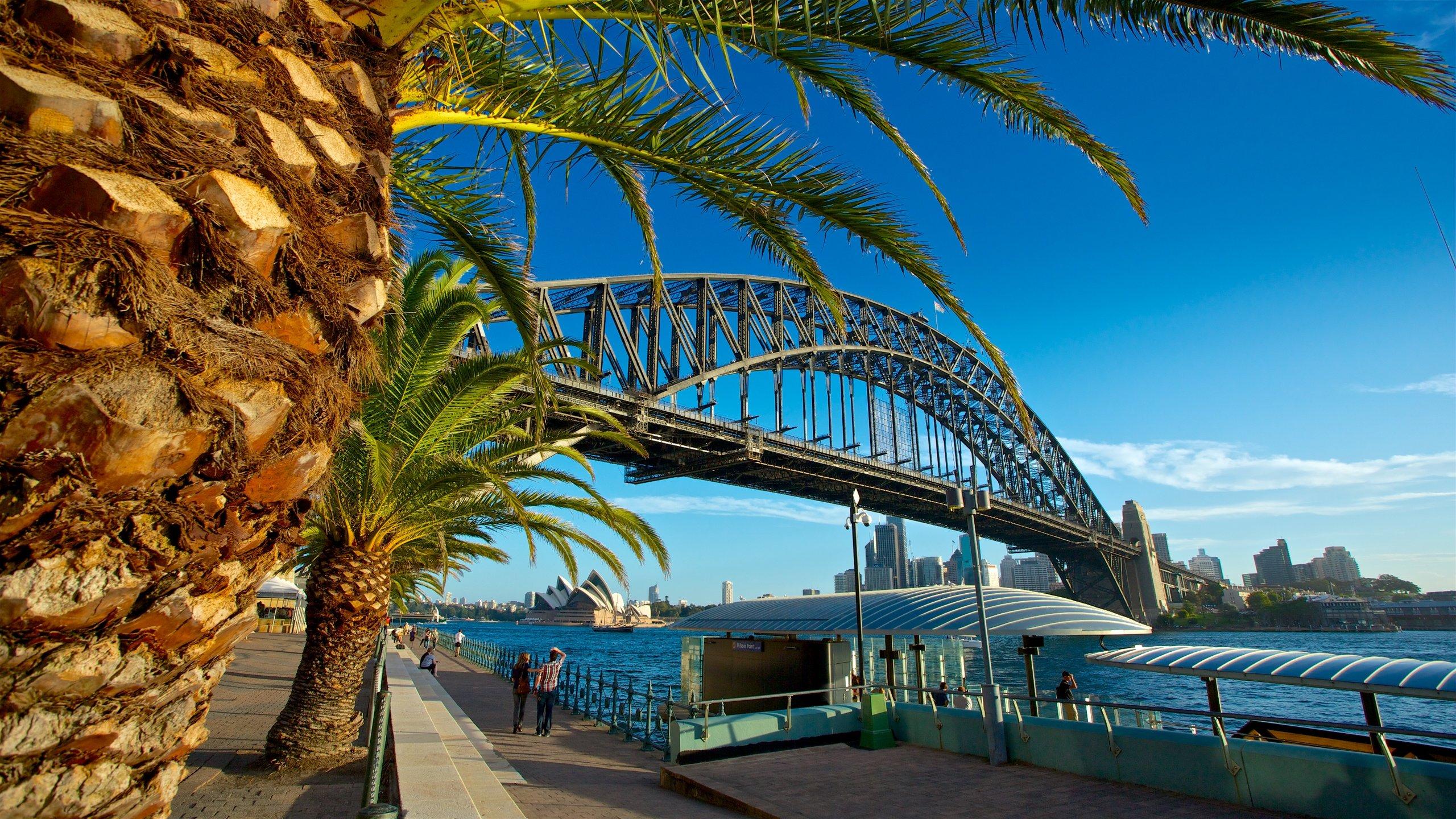 295091-Sydney-Harbour-Bridge.jpg (2560Ã?1440)