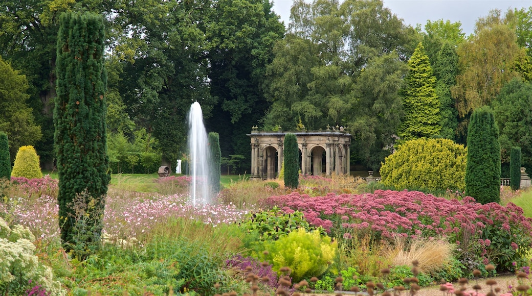 Trentham Gardens which includes a garden and wild flowers